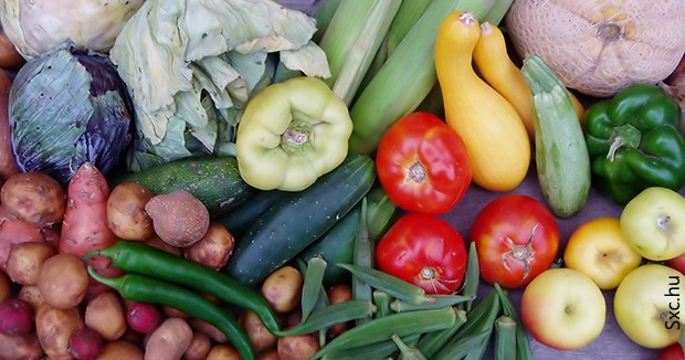 Ujatoba_organicos_alimentos