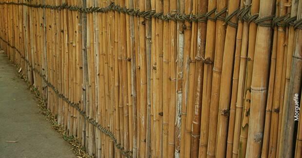 Ujatoba_bambu