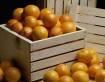 4 - Frutas cítricas