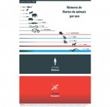 Universo_Jatoba_mortes_animais