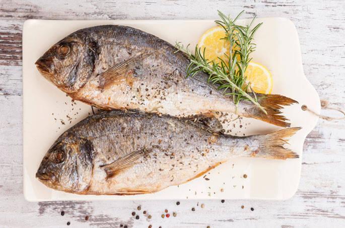 uiverso-jatoba-peixe1