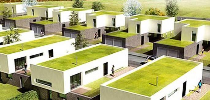 universo-jatoba-telhadosverdes
