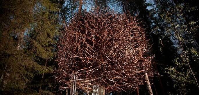 universo-jatoba-Treehotel3