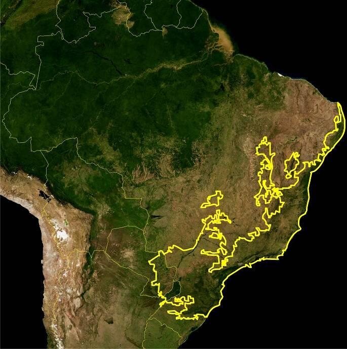 Mapa da ecorregião da Mata Atlântica (Imagem de satélite da NASA)