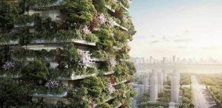 china-vertical-floresta