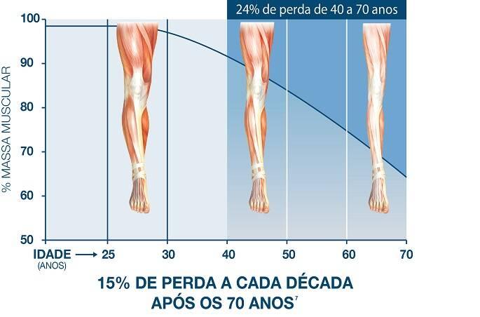 muscular-graph1